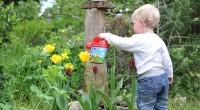 2. Apa manfaat menerapkan organic parenting dalam keluarga