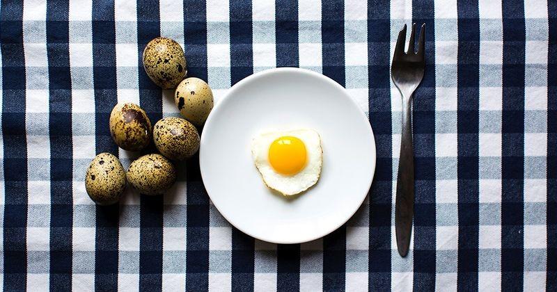 Manfaat Telur Puyuh Bagi Kesehatan Anak Popmama Com