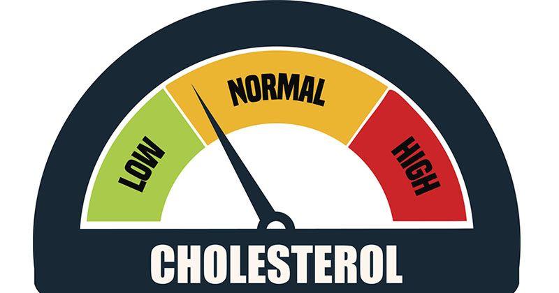 1. Mampu membantu menurunkan kolesterol