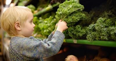 Berbentuk Mirip Selada, ini Manfaat Kale sebagai MPASI Bayi