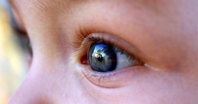 Sebelum Pakai Kacamata, Kenali 5 Tips Menjaga Kesehatan Mata Anak