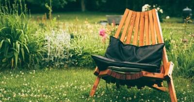 5 Jenis Rumput untuk Perindah Taman di Rumahmu
