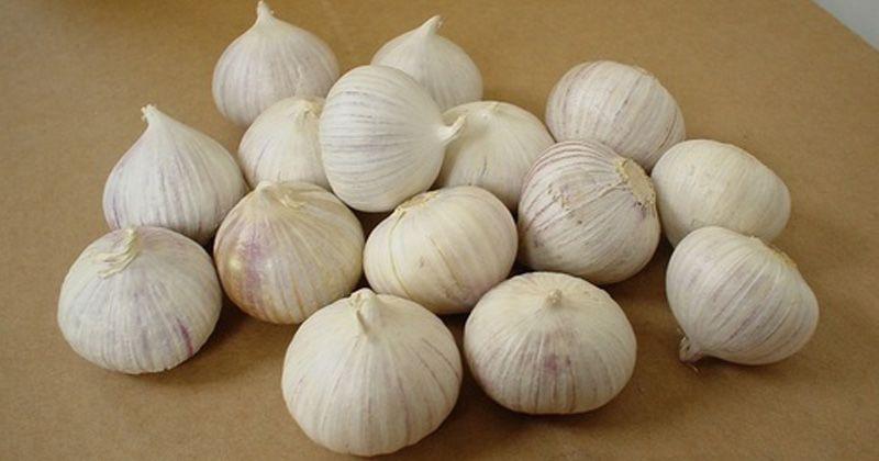 1. Bawang Putih