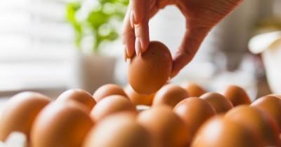 Manfaat Makan Telur Bagi Ibu Hamil
