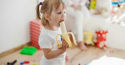 Gaya Hidup Sehat Anak Usia 4 Tahun Melatih Kebiasaan Makan Baik