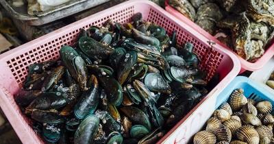 Makanan Laut Penuh Gizi, tetapi Apakah Bayi Boleh Makan Kerang