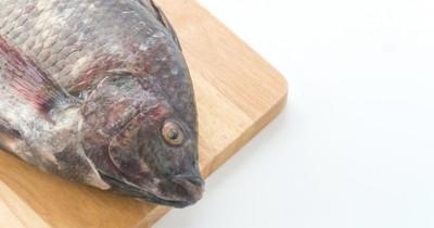 7 Manfaat Makan Ikan Nila Ibu Hamil