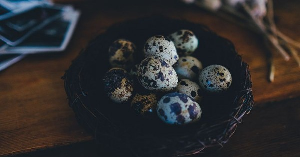 Manfaat Dan Aturan Aman Makan Telur Puyuh Untuk Ibu Hamil