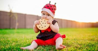 Sebelum Memutuskan Baby Led Weaning untuk si Kecil, Baca 7 Fakta Ini!