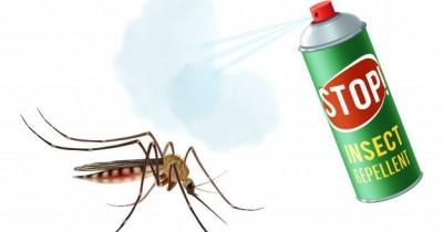 Cegah Demam Berdarah, Bolehkah Ibu Hamil Menggunakan Obat Nyamuk