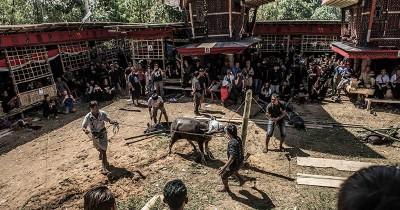 Berbeda Dari Lain, Begini Tradisi Pemakaman Unik Tana Toraja