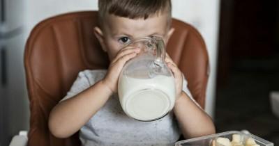 5 Rekomendasi Merek Susu Rendah Laktosa Anak Usia Diatas 1 Tahun