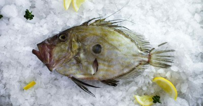Penuh Gizi Inilah 5 Manfaat Ikan Dori Ibu Hamil