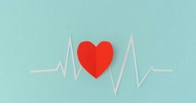 Pentingnya Monitor Detak Jantung untuk Memantau Kesehatan Janin