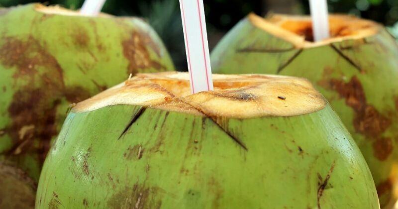 2. Air kelapa gantikan cairan tubuh setelah muntah