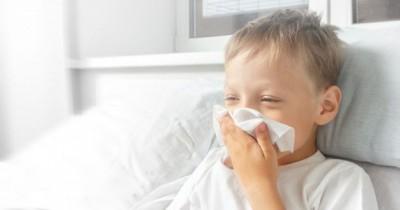 Anak Berusia Atas 5 Tahun Lebih Berisiko terkena Virus Flu Babi