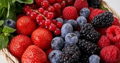 5 Jenis Buah Berry Ini Memiliki Manfaat Baik Kesehatan Anak