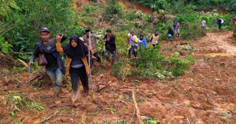7. Mencegah tanah longsor