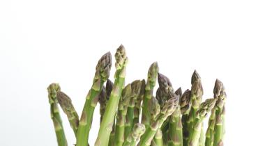 Asparagus Kaya Akan Folat, Bagus Dikonsumsi Mama Saat Kehamilan