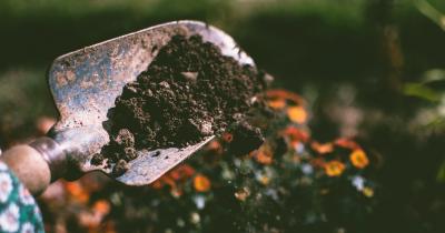 Cara Membuat Pupuk Organik dari Sampah Dapur