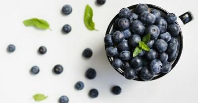 Manfaat Blueberry sebagai MPASI Bayi, Bisa Menjaga Kesehatan Mata
