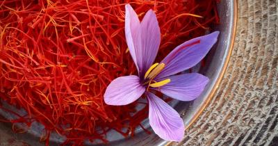 Rempah Termahal di Dunia, Ini Manfaat Saffron untuk Kesuburan!