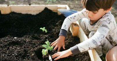 7 Manfaat Mengajak Anak Berkebun