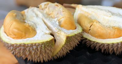 Hindari Konsumsi Durian Berbarengan dengan Makanan dan Minuman Ini!