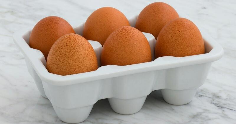 5. Telur dikemas protein lemak sehat