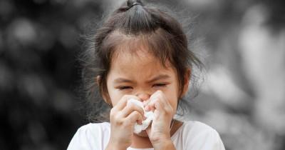 5 Cara Pengobatan Sinusitis Mandiri Rumah