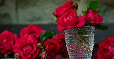 Ketahui 7 Manfaat Air Mawar Merawat Kecantikan Kulit