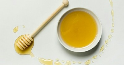 Wajib Tahu 8 Manfaat Clover Honey Meningkatkan Kesuburan