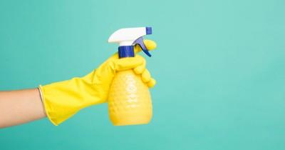 Awas, 4 Bahan Kimia Ini Berbahaya Bila Terpapar Ibu Hamil