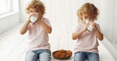 Rekomendasi Merek Susu Organik Anak Balita