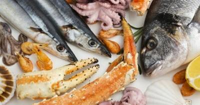 Temukan Virus Corona Seafood, Tiongkok Hentikan Impor Indonesia