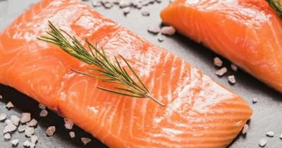 7 Macam Resep Olahan Ikan Salmon Anak Cara Membuatnya