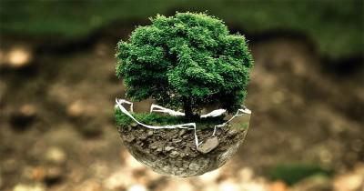 Dampak Penggunaan Sampah Plastik bagi Bumi dan Makhluk Hidup