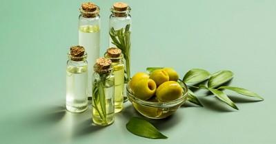 5 Manfaat Minyak Zaitun Perawatan Kulit