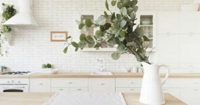 5 Tanaman Ini Sangat Cocok Diletakkan Dapur Rumah,