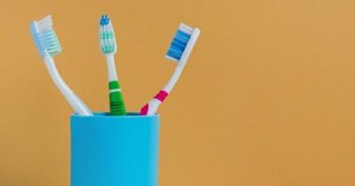 5 Rekomendasi Produk Sikat Gigi Terbaik Anggota Keluarga