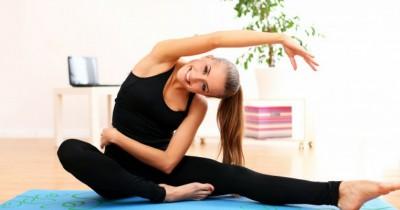5 Jenis Tanaman Hias Ini Cocok Ruang Olahraga Rumah