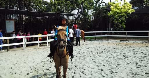 1. Branchsto Equestrian Park BSD City