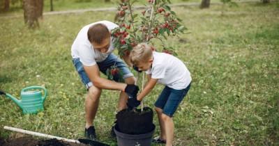 7 Cara Ampuh Supaya Papa Bisa Lebih Dekat Anak