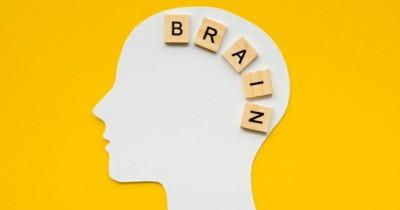10 Cara Efektif Meningkatkan Kekuatan Otak Balita