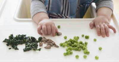 Belajar Makan, Ini 7 Rekomendasi Finger Food Bayi