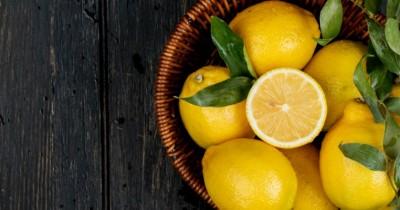 5 Manfaat Kulit Lemon Wajah Cara Mengolahnya