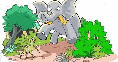 Dongeng Fabel Anak: Kancil dan Gajah