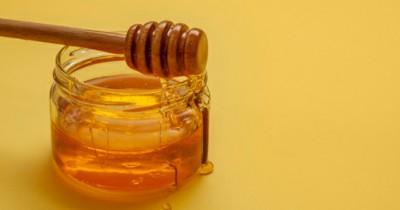 Harus Coba, 6 Manfaat Clover Honey Ibu Hamil