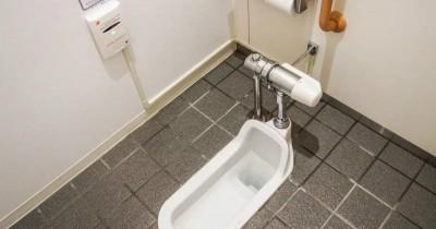 Perhatikan 5 Tips Aman Ini sebelum Gunakan Toilet Jongkok saat Hamil