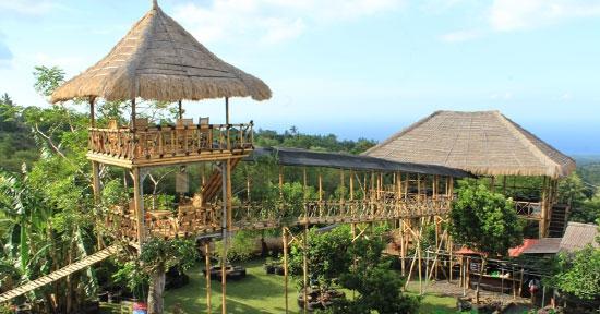 3. Temega Tree House